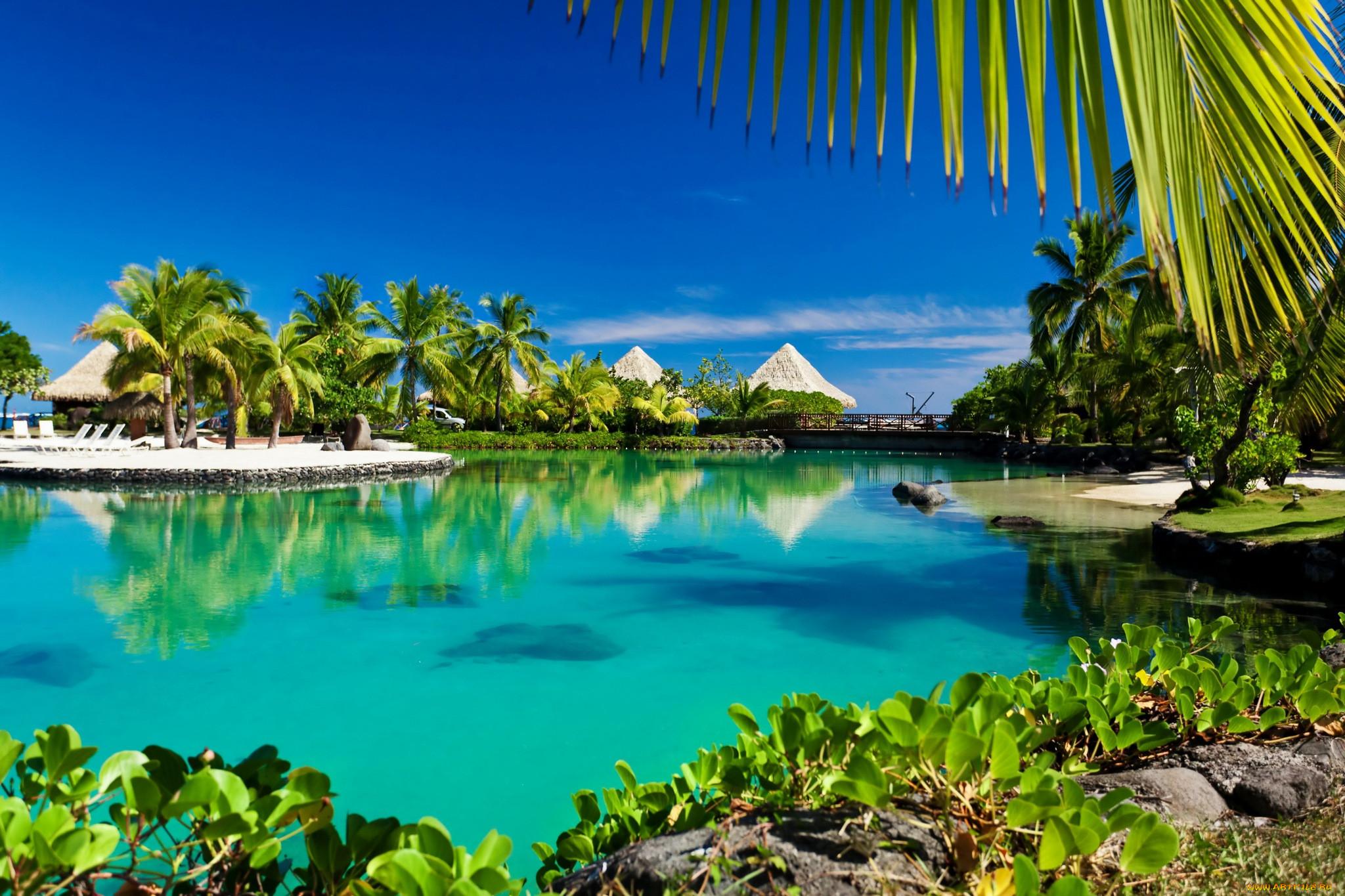 обои на рабочий стол пляж море пальмы бунгало обкатывать
